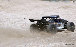 buggy rc roost ecx